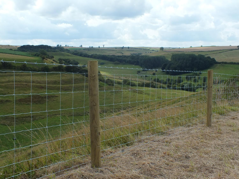 Stock Fencing Mark Vigrass Ltd