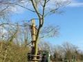 tree shear 1