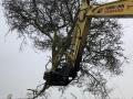 tree shear 6