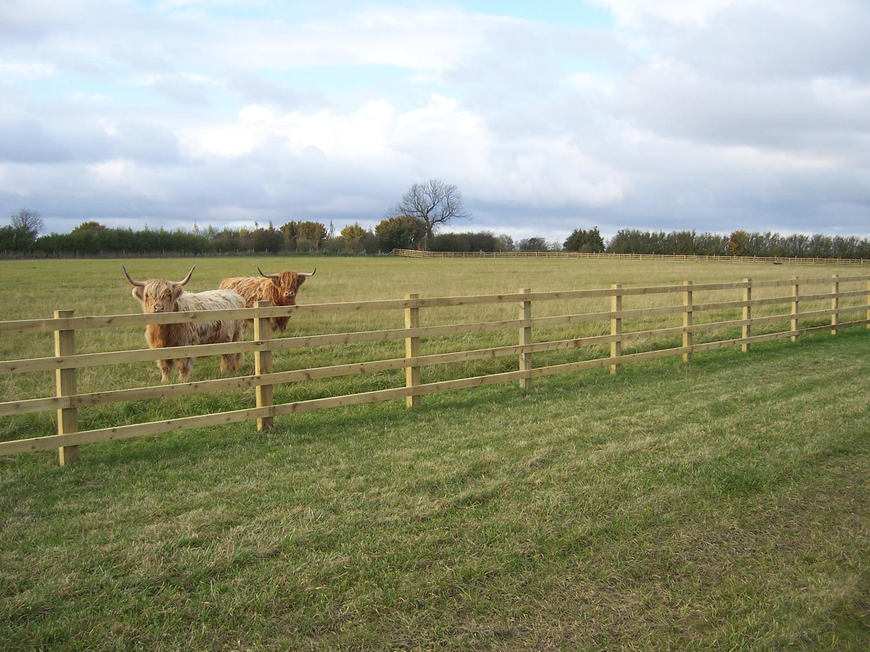 Wooden Post Amp Rail Fencing Mark Vigrass Ltd